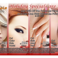ms-201511-holiday-offer-edit