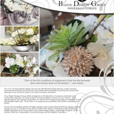 bdg-flyer-asid2013-002-2-edit.jpg